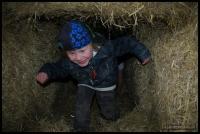 20100503_amners-farm_0056