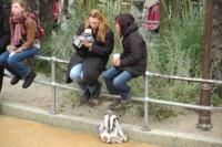 disnleyland-paris_20121030_0195