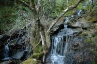 2011-04-25 Camping Wales_0085