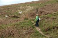 2011-04-25 Camping Wales_0109