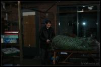 Kerstboom_2006-12-16_16-37-04