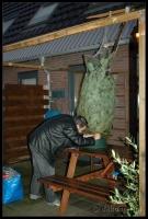 Kerstboom_2006-12-16_16-39-22