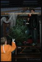 Kerstboom_2006-12-16_16-41-04