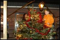Kerstboom_2006-12-16_17-34-55