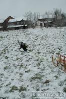 2009-02-02-Snow_0019