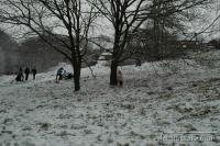 2009-02-02-Snow_0034