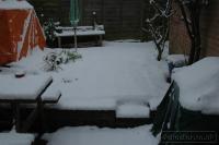 2009-02-04-snow-again_0001
