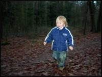 2007-12-09 16-01-14_boswandelen