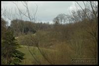 2009-02-22 Beale park_0203