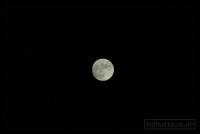2009-04-08-full-moon_0052