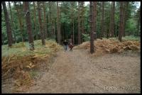 20090913_bracknell-forest-bike_0027