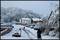 20091222_more-snow_0007