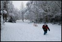 20091222_more-snow_0036