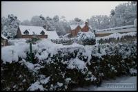 20091222_more-snow_0055