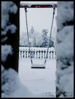 20091222_more-snow_0065