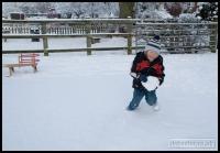 20091222_more-snow_0068