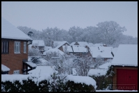 20091222_more-snow_0126
