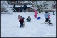 20091222_more-snow_0138
