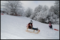 20091222_more-snow_0153