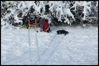 20091222_more-snow_0158