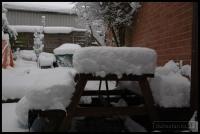 2010-01-06-more-snow_0001