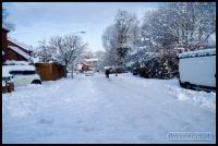 20100107_snow_0013