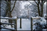 20100107_snow_0031