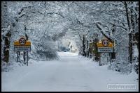 20100107_snow_0046