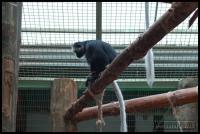 20100405_marwell-zoo_0048