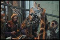 20100405_marwell-zoo_0077