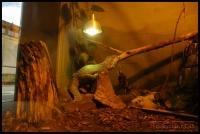 20100405_marwell-zoo_0089