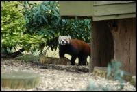 20100405_marwell-zoo_0110