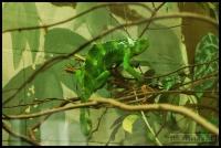 20100405_marwell-zoo_0344