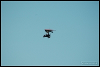 20100417_flying-with-paul_0264