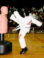 2013-02-17-riley-tea-kwon-do-championship_0290