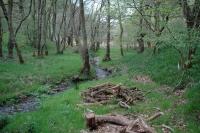2011-04-25 Camping Wales_0135