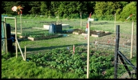 20090523_allotment-update_0016