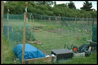 20090621_allotment_0044